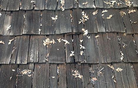 Wood Shake Roof